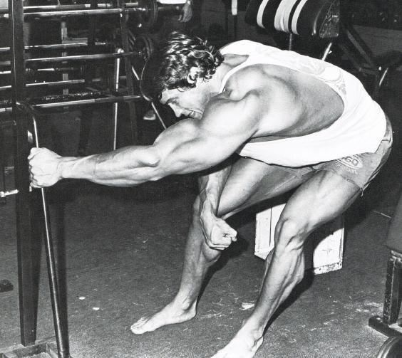 Arnold Schwarzenegger Lat Stretch