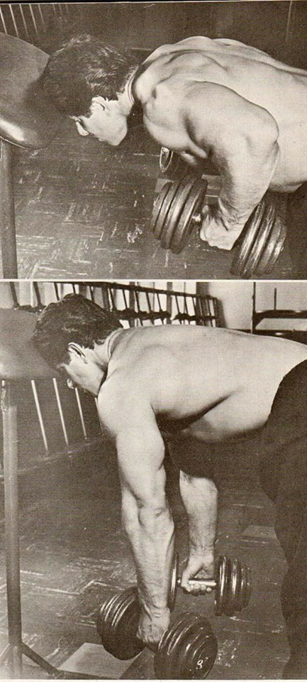 Reg Park Supported Bent Over Bilateral Dumbbell Row