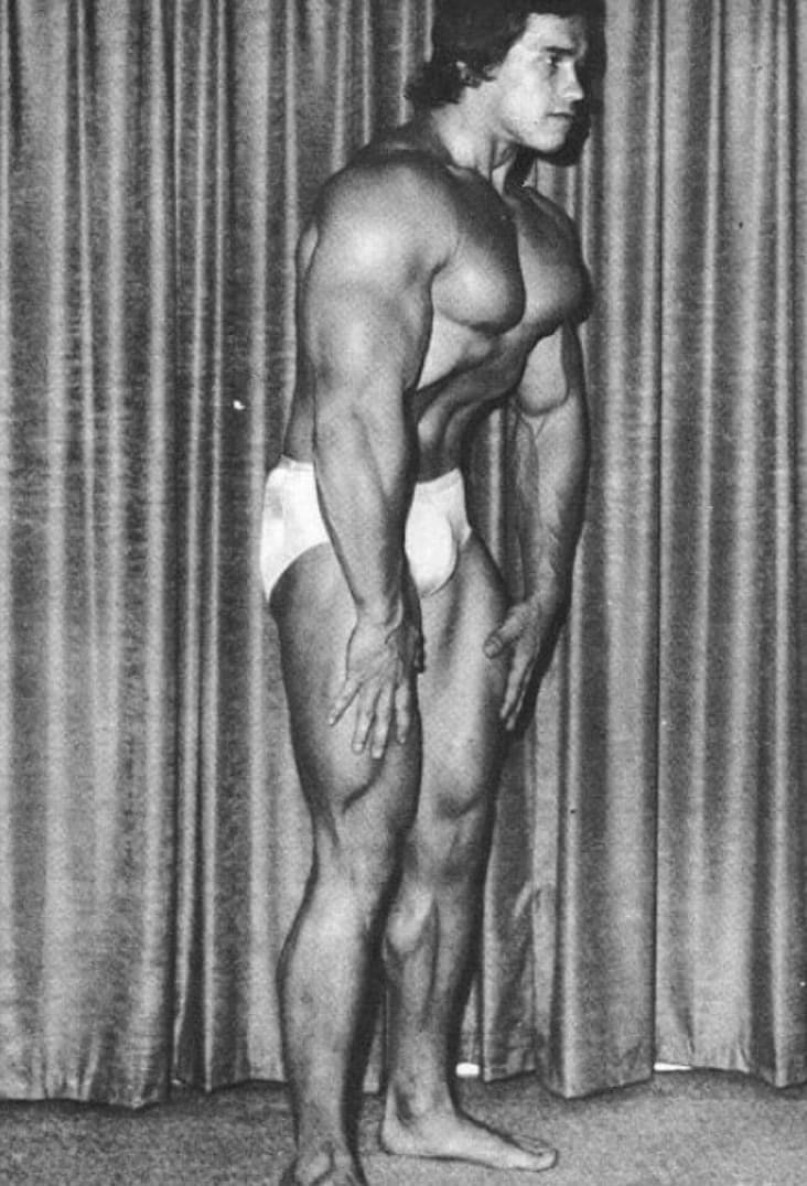 Arnold Schwarzenegger Posing