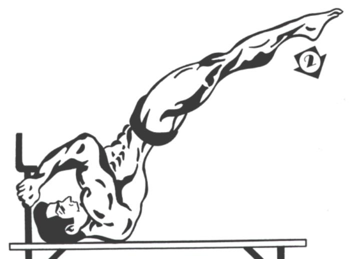 Shoulder Planche on Bench Phase 2