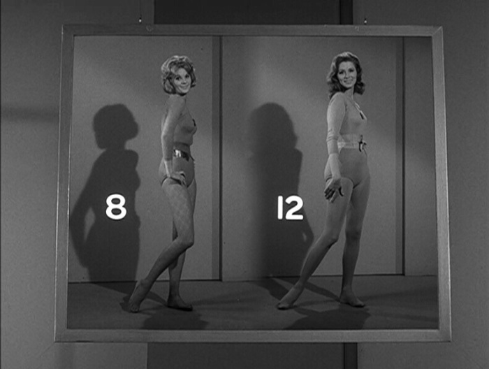 Number 12 Looks Just Like You, The Twilight Zone