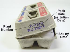 Egg Carton Code