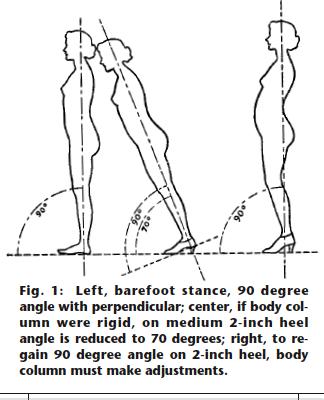 High Heeled Shoes Illustration