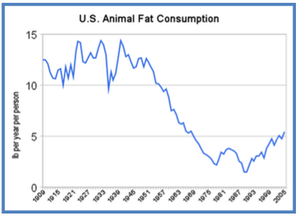 United States Animal Fat Consumption