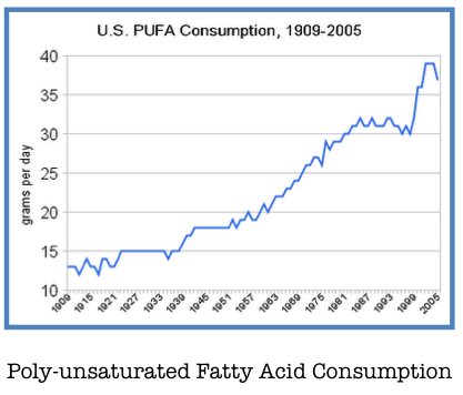 United States Polyunsaturated Fatty Acid Consumption